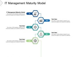 IT Management Maturity Model Ppt Powerpoint Presentation Portfolio Cpb
