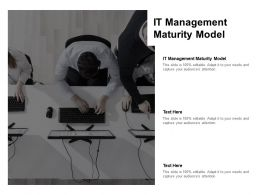 IT Management Maturity Model Ppt Powerpoint Presentation Styles Background Designs Cpb