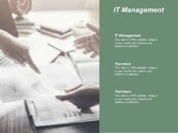 It Management Ppt Powerpoint Presentation Inspiration Infographic Template Cpb