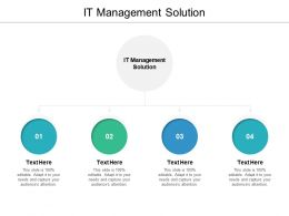 IT Management Solution Ppt Powerpoint Presentation Outline Example Cpb