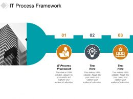 It Process Framework Ppt Powerpoint Presentation Styles Inspiration Cpb