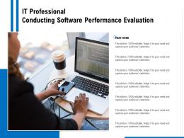 It Professional Conducting Software Performance Evaluation