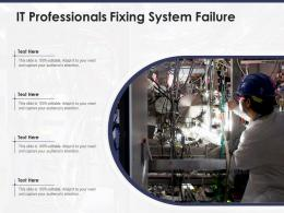 IT Professionals Fixing System Failure