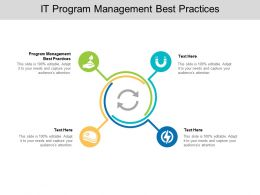 IT Program Management Best Practices Ppt Powerpoint Presentation Guide Cpb