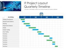 IT Project Layout Quarterly Timeline