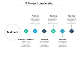 IT Project Leadership Ppt Powerpoint Presentation Slides Graphic Images Cpb