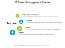 IT Project Management Phases Ppt Powerpoint Presentation Pictures Graphics Tutorials Cpb