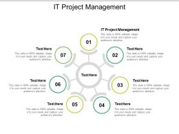 IT Project Management Ppt Powerpoint Presentation Infographics Graphics Download Cpb