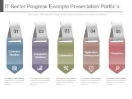 It Sector Progress Example Presentation Portfolio