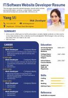 IT Software Website Developer Resume Presentation Report Infographic PPT PDF Document