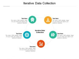 Iterative Data Collection Ppt Powerpoint Presentation Styles Icons Cpb