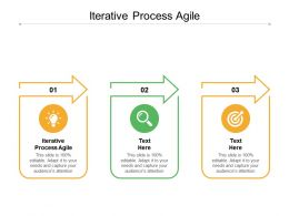 Iterative Process Agile Ppt Powerpoint Presentation Inspiration Clipart Images Cpb