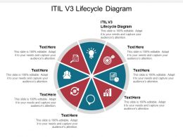 ITIL V3 Lifecycle Diagram Ppt Powerpoint Presentation Styles Graphics Design Cpb