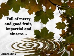 James 3 17 Full of mercy and good fruit PowerPoint Church Sermon