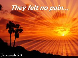 Jeremiah 5 3 They Felt No Pain Powerpoint Church Sermon