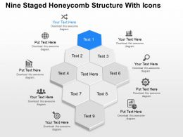 Jg Nine Staged Honeycomb Structure With Icons Powerpoint Template