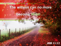 Job 11 12 The Witless Can No More Powerpoint Church Sermon
