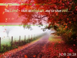 Job 28 28 The Lord That Is Wisdom Powerpoint Church Sermon