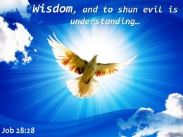 Job 28 28 Wisdom And To Shun Powerpoint Church Sermon