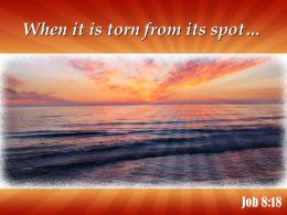 job_8_18_when_it_is_torn_from_its_powerpoint_church_sermon_Slide01
