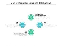 Job Description Business Intelligence Ppt Powerpoint Presentation File Model Cpb