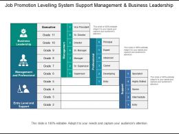Job Promotion Levelling System Support Management And Business Leadership