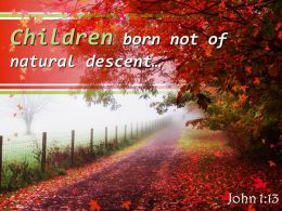 John 1 13 Children Born Not Of Natural Descent Powerpoint Church Sermon