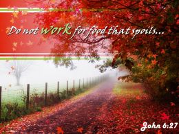 John 6 27 Do Not Work For Food That Powerpoint Church Sermon