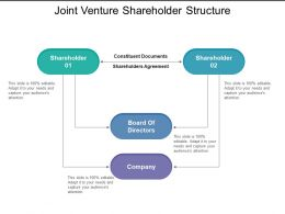 Joint Venture Shareholder Structure