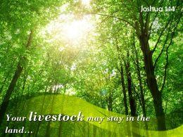 Joshua 1 14 Livestock May Stay In The Land Powerpoint Church Sermon