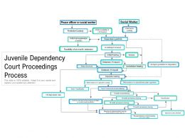Juvenile Dependency Court Proceedings Process