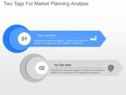 jy Two Tags For Market Planning Analysis Powerpoint Template