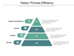 Kaizen Process Efficiency Ppt Powerpoint Presentation Layouts Slide Cpb