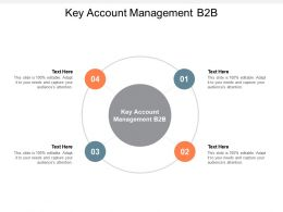 Key Account Management B2B Ppt Powerpoint Presentation Pictures Design Ideas Cpb