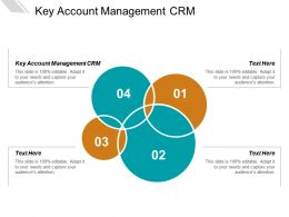 Key Account Management CRM Ppt Powerpoint Presentation Summary Cpb