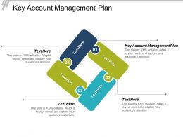 Key Account Management Plan Ppt Powerpoint Presentation Diagram Images Cpb