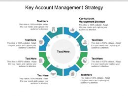 Key Account Management Strategy Ppt Powerpoint Presentation Icon Cpb
