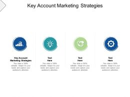 Key Account Marketing Strategies Ppt Powerpoint Presentation Outline Background Cpb