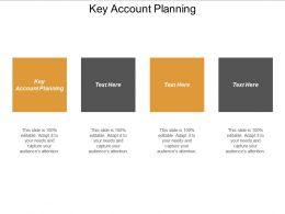 Key Account Planning Ppt Powerpoint Presentation File Structure Cpb