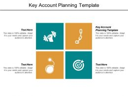 Key Account Planning Template Ppt Powerpoint Presentation File Template Cpb