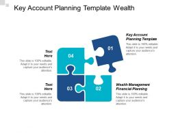 Key Account Planning Template Wealth Management Financial Planning Cpb