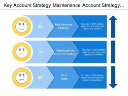 Key Account Strategy Maintenance Account Strategy Market Plan