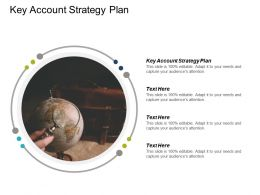 Key Account Strategy Plan Ppt Powerpoint Presentation Diagram Templates Cpb