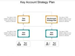 Key Account Strategy Plan Ppt Powerpoint Presentation Portfolio Graphics Download Cpb