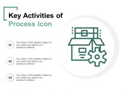 Key Activities Of Process Icon