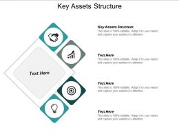 Key Assets Structure Ppt Powerpoint Presentation Icon Visuals Cpb