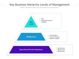 Key Business Hierarchy Levels Of Management