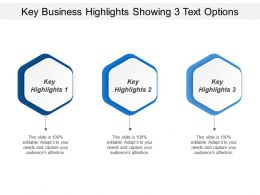 Key Business Highlights Showing 3 Text Options