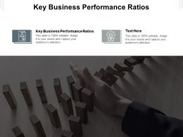 Key Business Performance Ratios Ppt Powerpoint Presentation Layouts Shapes Cpb