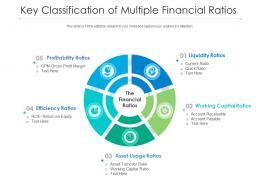 Key Classification Of Multiple Financial Ratios